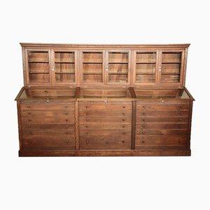 Vintage Museum Curiosity Cabinet, 1920s