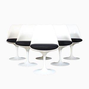 Sillas de comedor Tulip Mid-Century de Eero Saarinen para Knoll Inc. / Knoll International. Juego de 6
