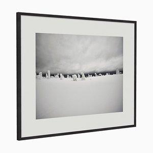 Sentinels Kunstdruck mit schwarzem Rahmen aus Eiche von Guy Russell von Qgallery