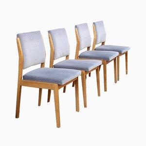 Mid-Century Esszimmerstühle aus Eiche von Fröscher KG, 4er Set