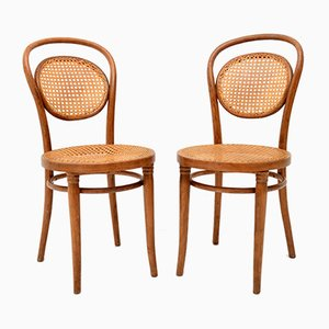 Polish Bentwood Dining Chairs from Thonet, 1950s, Set of 4