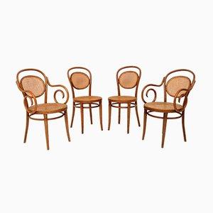 Polnische Esszimmerstühle aus Bugholz von Thonet, 1950er, 4er Set