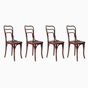 No. 144 Side Chairs from Gebrüder Thonet Vienna GmbH, 1911, Set of 4