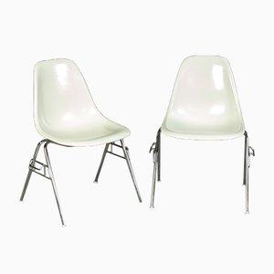 Mid-Century Esszimmerstühle von Charles & Ray Eames für Vitra, 2er Set