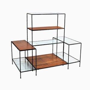 Estantería modular Abstracta danesa de teca y vidrio de Poul Cadovius para Cado, años 60