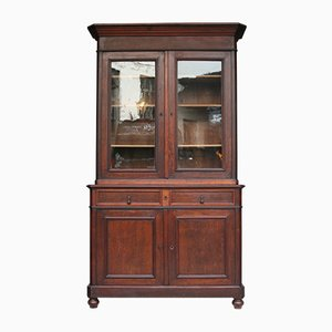 Antique Louis Philippe Style Mahogany Cabinet, 1900s