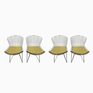 Dining Chairs by Harry Bertoia for Knoll Inc. / Knoll International, 1970s, Set of 4
