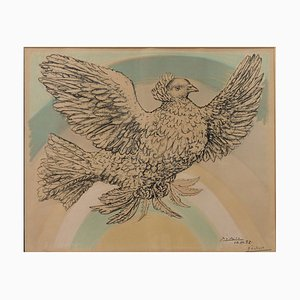 Rainbow Dove Lithograph by Pablo Picasso
