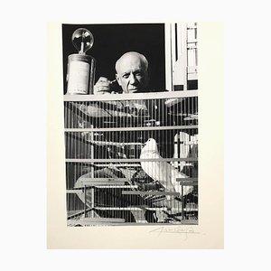 Pablo Picasso Fotografien von Lucien Clergue