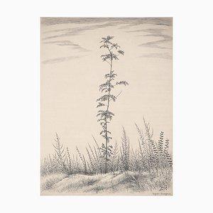 A Young Tree Engraving by Kiyoshi Hasegawa, 1953