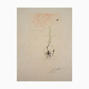 "Salvador Dali - Shakespeare ""Henry III"", original signed engraving"
