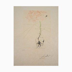 """Salvador Dali - Shakespeare """"Henry III"""", grabado original firmado"""