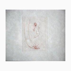 Les Amours De Cassandre Drypoint by Salvador Dali