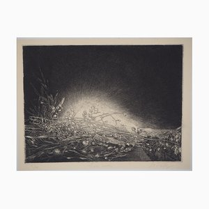 Liori Secchi Engaving by Jean-Pierre Velly