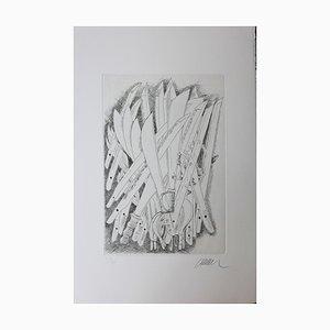 The Sabers Engraving by Fernandez Arman