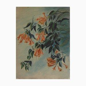 Étude de Fleur Exotique Aquarelle by Alexandre Rigotard and Marcel Savin, 1923