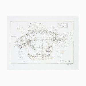 François DELAROZIERE - Le poisson pirate, lithographie originale signée et numérotée