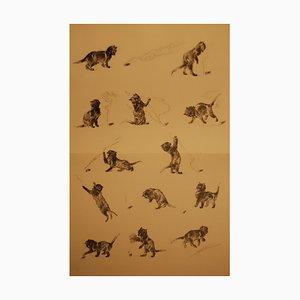 Théophile Alexandre Steinlen - Chats Et Autres Bêtes 7 - Lithograph