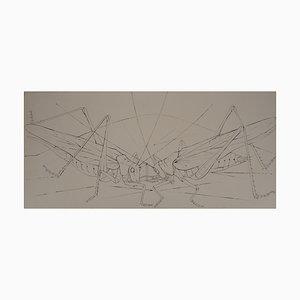 Les Sauterelles Engraving by Pierre-Yves Trémois
