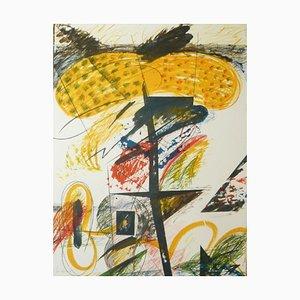 Joan DURAN BENET - Belize 8, lithographie signée et numérotée