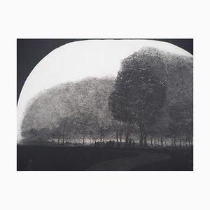 Vue du Parc Engraving by Harold Altman