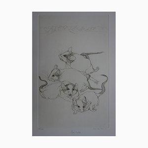 Cécile REIMS - Les rats, Gravure originale signée