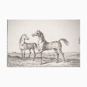 Litografia Croquis de Chevaux di Charles-Antoine Vernet