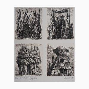 6e, 7e, 8e et 9ème Nymphées Gravure by François Houtin