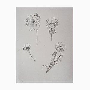 Etude de Fleurs Engraving by Jean-Emile Laboureur