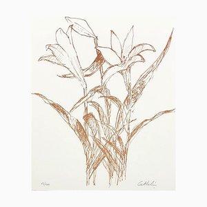 Litografia Small Orange Lily di Bernard Cathelin
