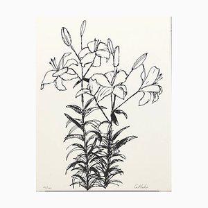 Bernard CATHELIN - Composition - Lithographie originale signée et numérotée