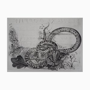 Serpent et Crapaud Engraving by Pierre-Yves Tremois