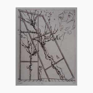 The Kite Engraving by Mordecaï Moreh