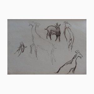 The Goats I Zeichnung von Georges Manzana-Pissarro