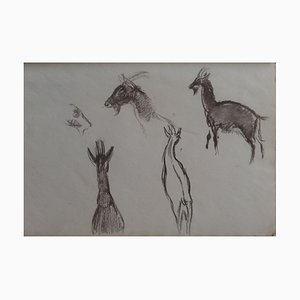 Goat III Drawing by Georges Manzana-Pissarro
