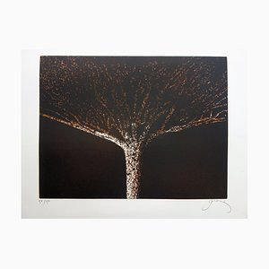 The tree Etching and Aquatint by Mario Prassinos