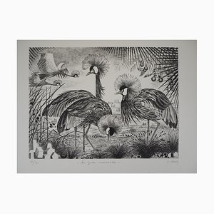 Les Grues Couronnées Engraving by Simone Vrain