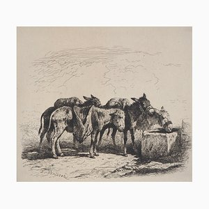 Felix BRISSOT DE WARWILLE - Spanish donkeys, original signed etching