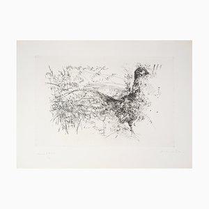 Yves- Jean COMMERE : Balade de paon - Gravure originale signée