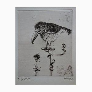 Petit Oiseau Engraving by Mordecai Moreh