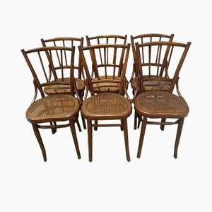 Antique Bistro Chairs from Fiume, Set of 6