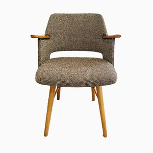 Mid-Century Armchair by Cees Braakman for Pastoe, 1954