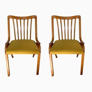 Mid-Century Dining Chairs from Drevopodnik Holesov, Set of 2