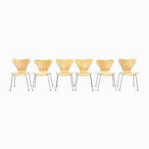 Chaises de Salle à Manger Butterfly Modèle 3107 par Fritz Hansen pour Arne Jacobsen, 1990s, Set de 6
