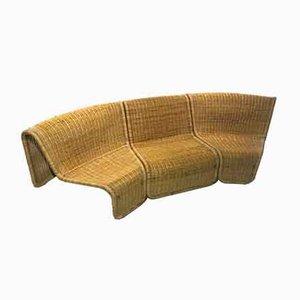 Italienische Modell P3 Stühle aus Rattan von Tito Agnoli, 1960er, 3er Set