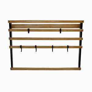 Mid-Century Coat Rack and Hooks by Carl Auböck, 1950s
