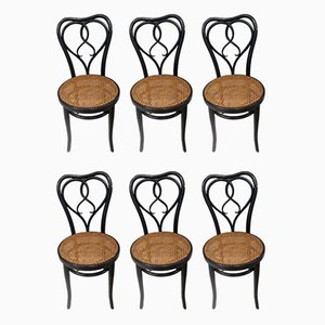 Antique Bistro Chairs from Thonet, 1900s, Set of 6