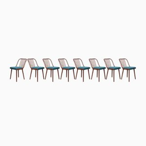 Dining Chairs by Antonín Šuman for Jitona, 1960s, Set of 8
