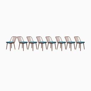 Esszimmerstühle von Antonín Šuman für Jitona, 1960er, 8er Set