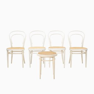 Model 214 Bentwood and Wicker Chairs from Thonet, 1960s, Set of 5